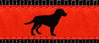 022 Black Dog Ribbon