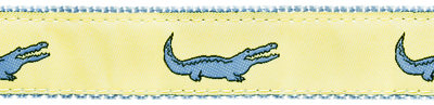 275 Yellow Alligator Ribbon