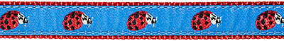 304 Lady Bug Ribbon