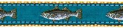 320 Teal Striped Bass Ribbon