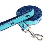 Dog Leash - Three Quarter Inch .75""