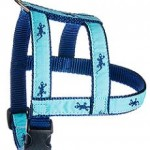 """""""H"""" Style Dog Harness .75"""""""