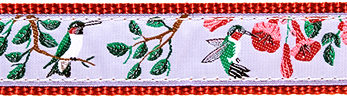 Hummingbird Ribbon