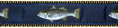 036 Striped Bass Ribbon