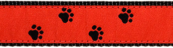 092 BlackPaws on Red Ribbon