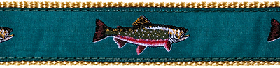 213 Teal Brook Trout Ribbon