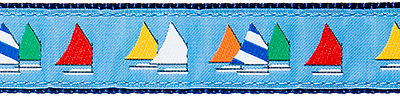 Light Blue Rainbow Fleet Ribbon