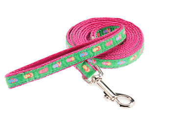 "Nylon & Ribbon 1/2"" Dog or Cat Leash"