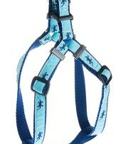 "Step In Dog Harness, .75"" by Preston Ribbons"